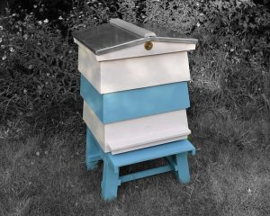 Building a bee hive