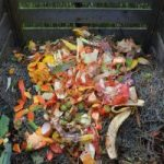 Best Home Composting Systems